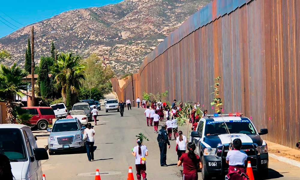 Gobierno Municipal de Tecate planta más de 200 árboles en la línea fronteriza con Estados Unidos