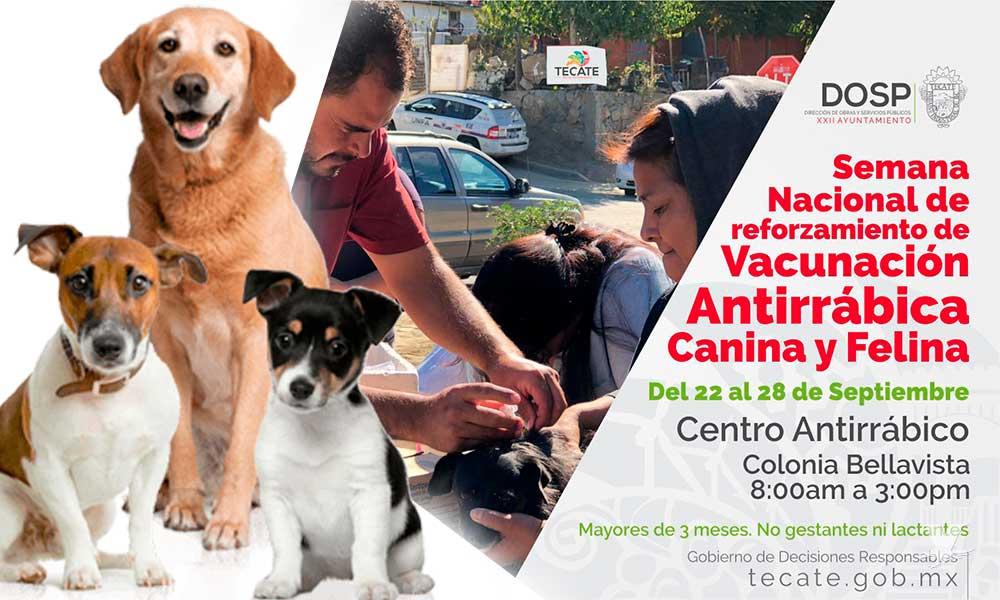Arrancó en Tecate la Semana Nacional de Vacunación Antirrábica en Tecate