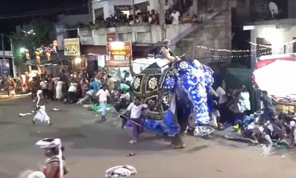 (VIDEO) Elefante enfurece durante un desfile y termina lesionando a 18 personas