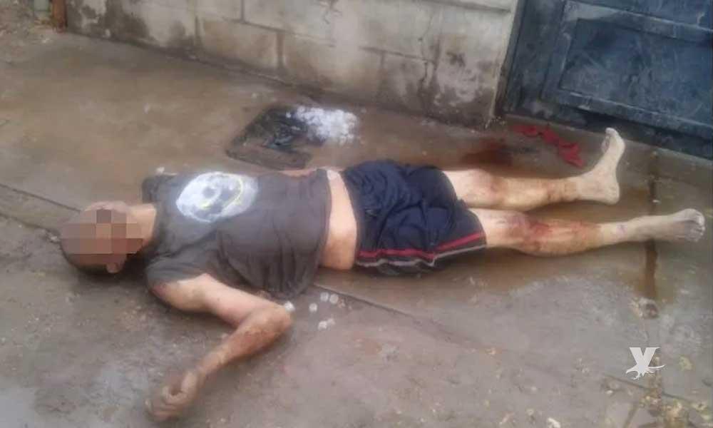 Perro pitbull ataca cuerpo de hombre que se convulsionaba debido a una sobredosis en Mexicali