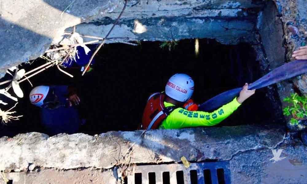 (VIDEO) Rescatan cuerpo de Alejandra, la mujer que fue succionada por una alcantarilla