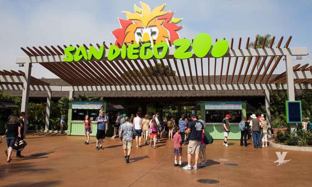 En octubre los niños entrarán ¡gratis! al zoológico de San Diego