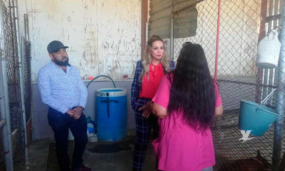 Zulema Adams realiza visitas de reconocimiento en Centro Antirrábico, Parques y Jardines
