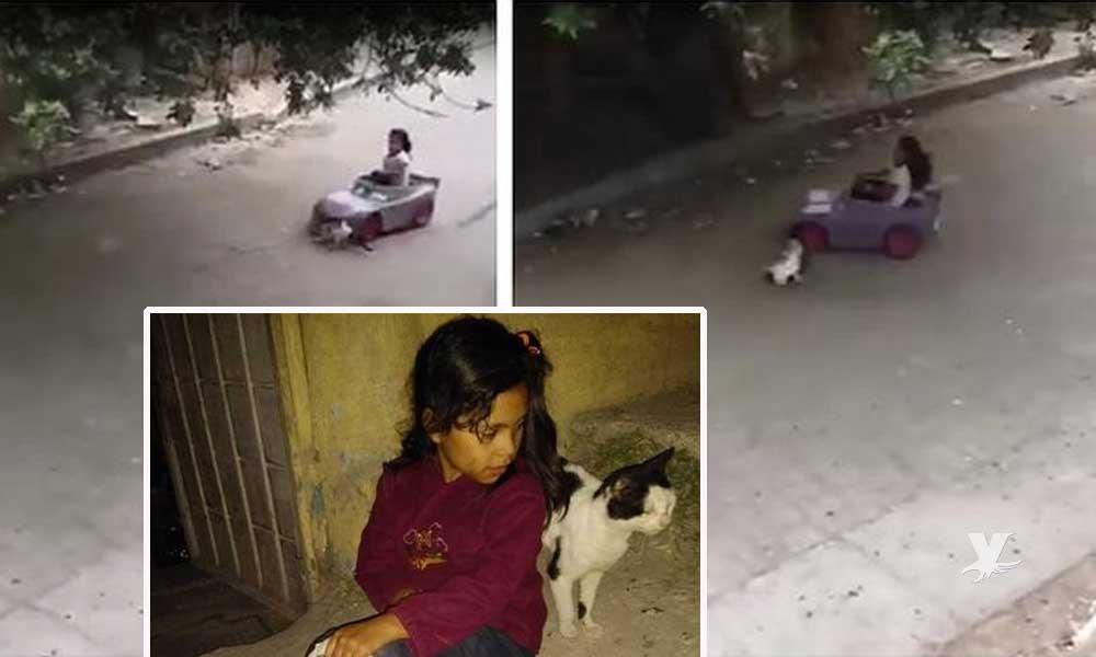 La niña que atropelló al gato en el video y se volvió viral vive en Tijuana
