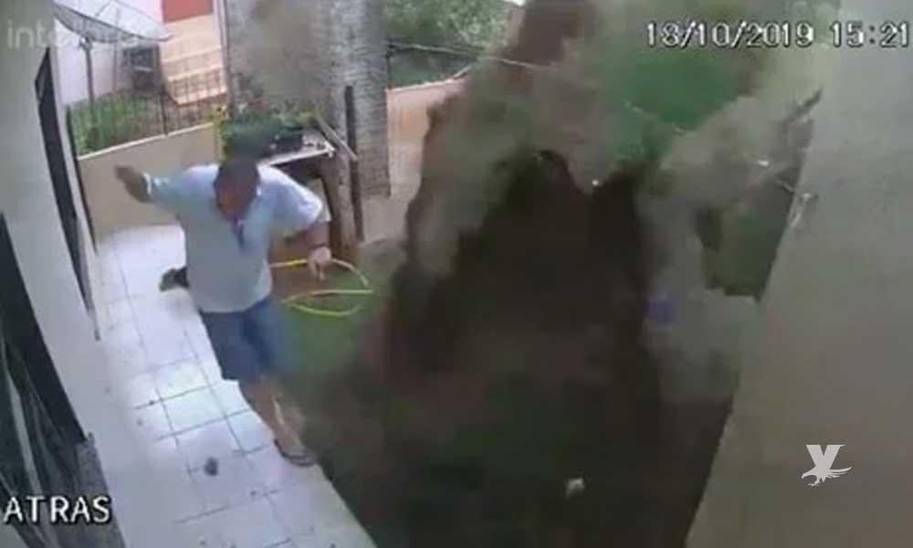 (VIDEO) Hombre genera explosión en su patio al intentar eliminar una plaga de cucarachas