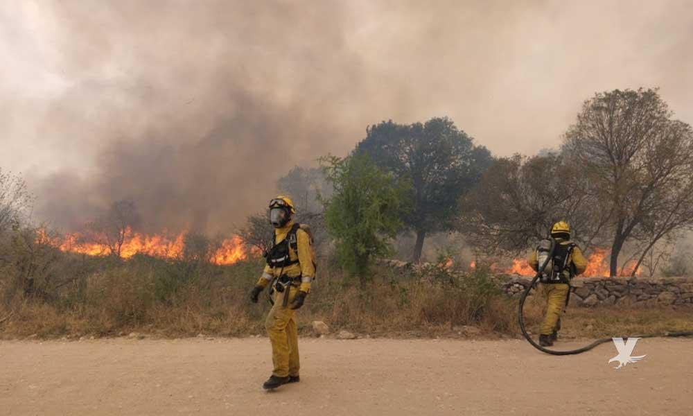 Como afecta a los pulmones el humo y cenizas de los incendios