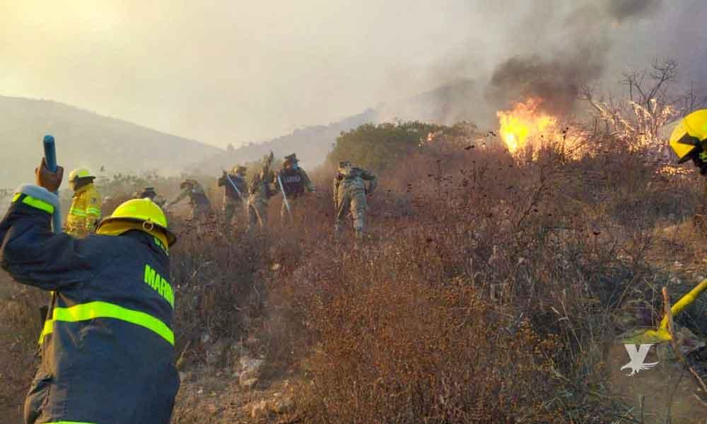 Municipios solicitan declaratoria de desastre por incendios en Baja California
