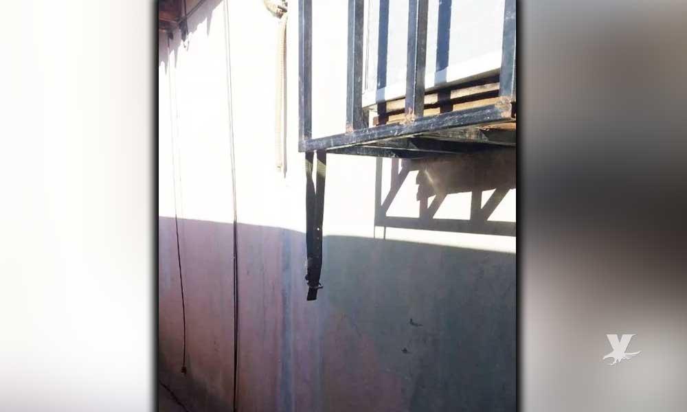 Niño de 9 años se suicida en la ventana de su casa en Mexicali