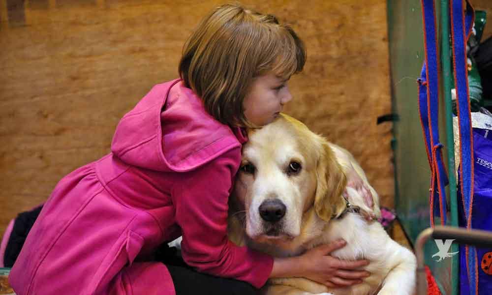 Tener un perro es bueno para la salud: Estudio