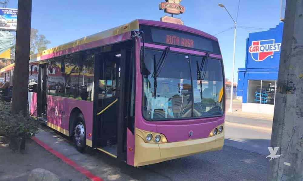 Benefician a 25 mil mujeres en Tijuana con la nueva línea rosa