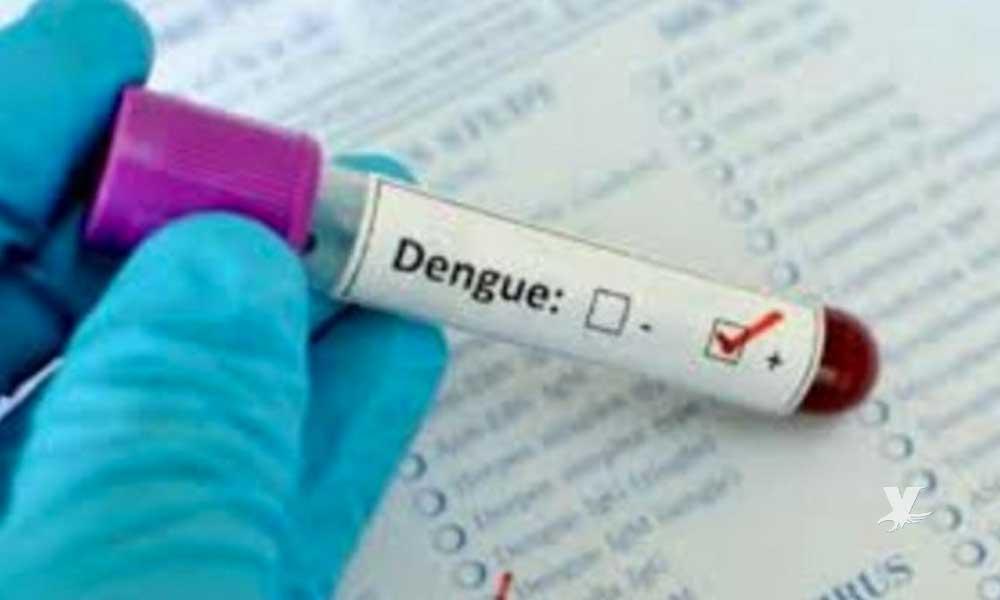 Médicos descubren primer contagio de dengue por relaciones sexuales