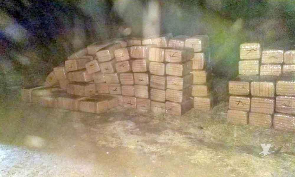 Aseguran 2 toneladas de marihuana en Tijuana