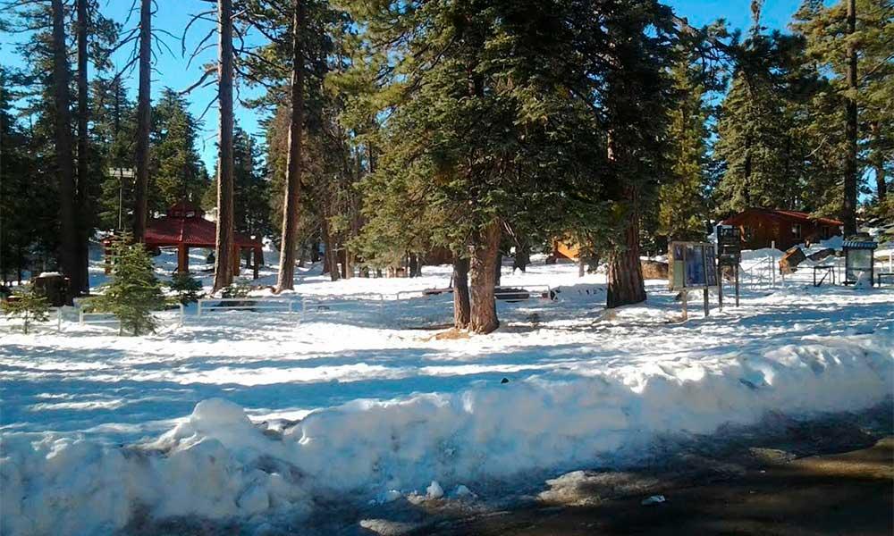 Cierran acceso a Parque Nacional Sierra de San Pedro Mártir por nevadas