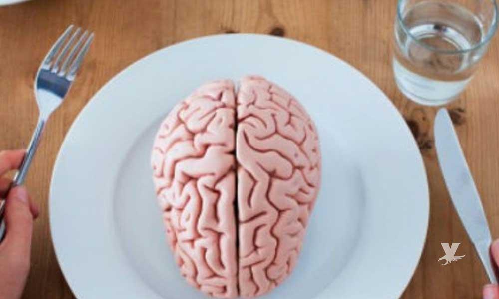 Alimentos que consumimos diariamente y dañan el cerebro