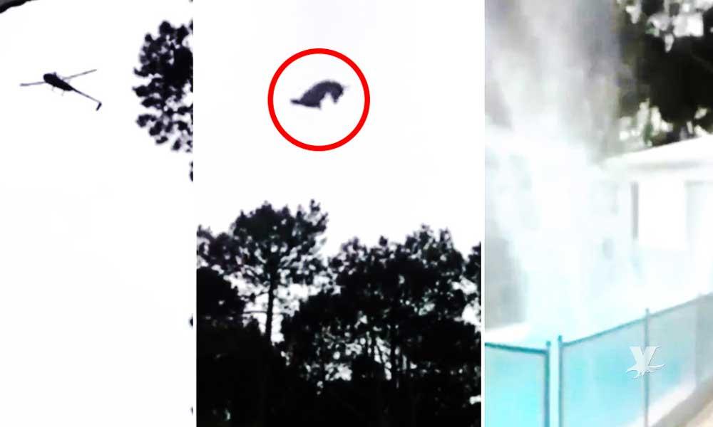 (VIDEO) Millonario lanza desde un helicóptero a un puerco dentro de una alberca