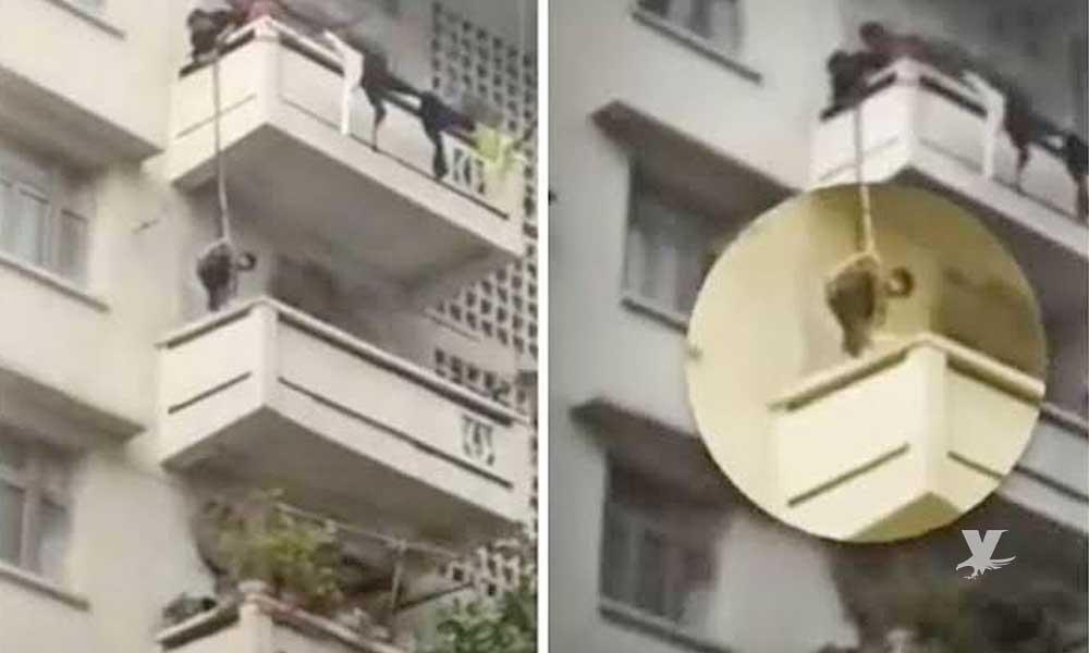 (VIDEO) Abuela cuelga a su nieto desde el quinto piso para que rescate su gato