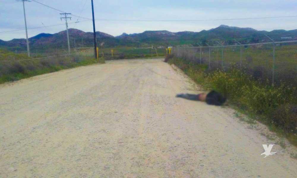 Encuentran cuerpo tirado cerca de empresa en Valle de Las Palmas