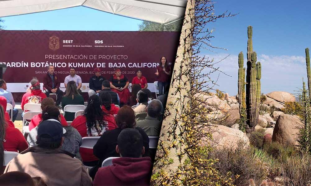 Baja California contará con su primer Jardín Etnobotánico