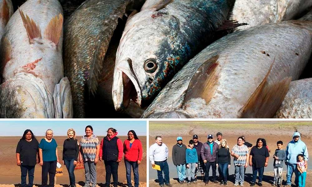 Pesca de la curvina golfina beneficiará a comunidad indígena cucapá en BC