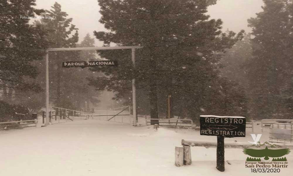 Cierran Parque Nacional San Pedro Mártir por nevadas