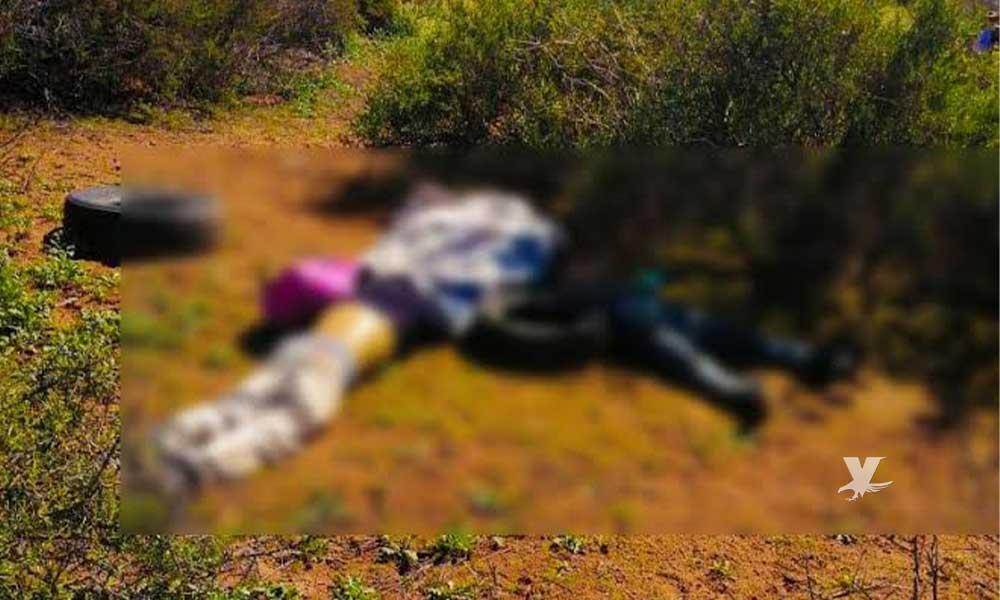 Localizan dos cuerpos entre matorrales en Valle de las Palmas, Tecate