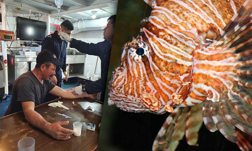 Auxilian a pescador por picadura de pez escorpión en San Felipe
