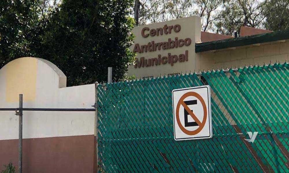 Invita Ayuntamiento de Tecate a la campaña de vacunación del Centro antirrábico