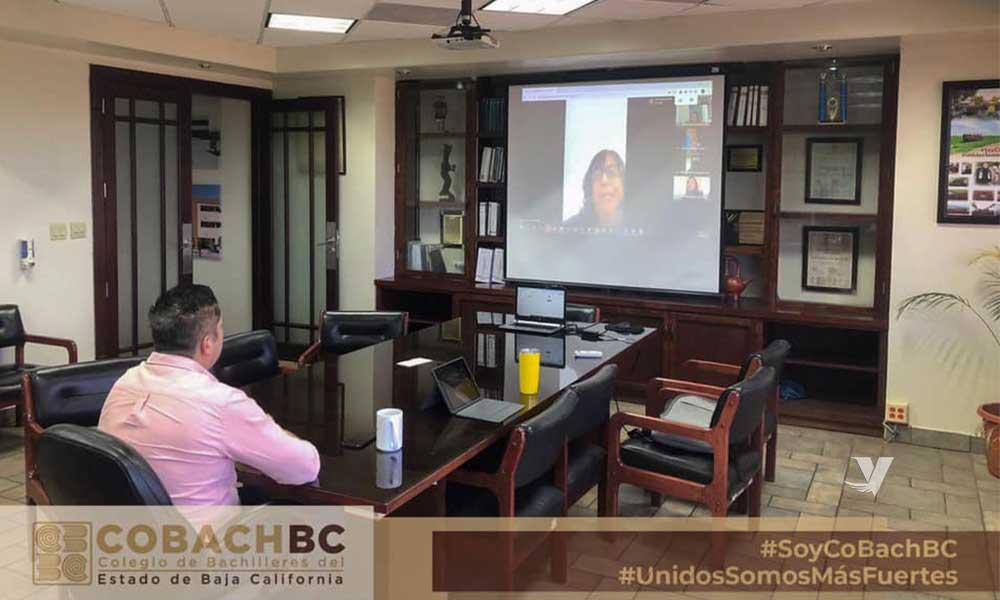 Colegio de Bachilleres reanuda clases a distancia en BC