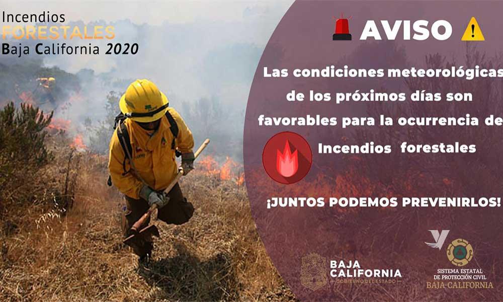 Invita Protección Civil de Baja California a prevenir incendios forestales