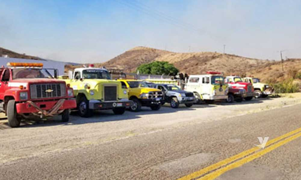 Controlan en un 80% incendio forestal de Valle de las Palmas