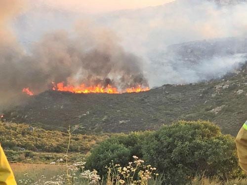 Controlan en un 65% incendio forestal de Valle de las Palmas