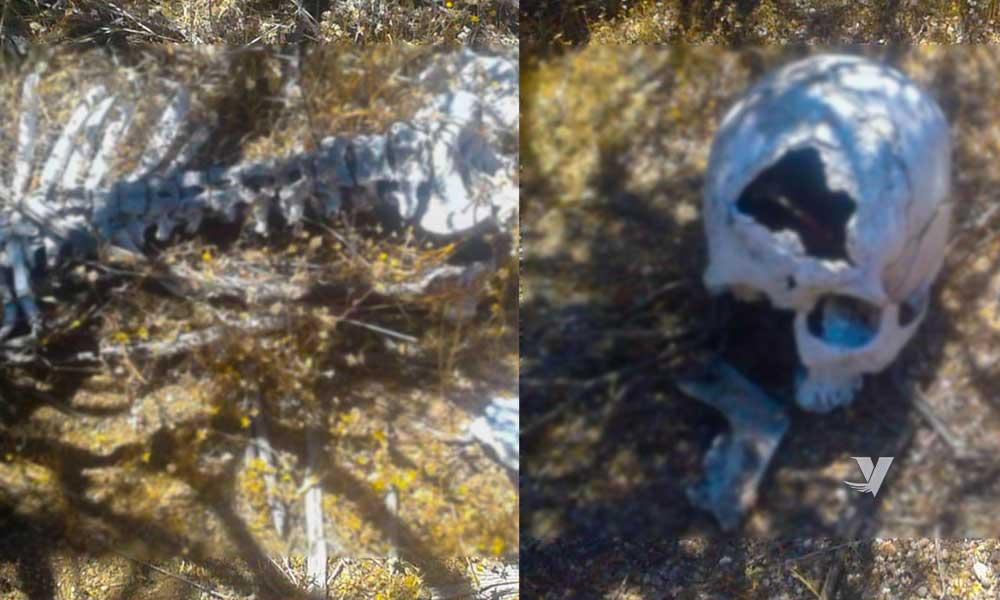 Localizan restos humanos en delegación Mi Ranchito