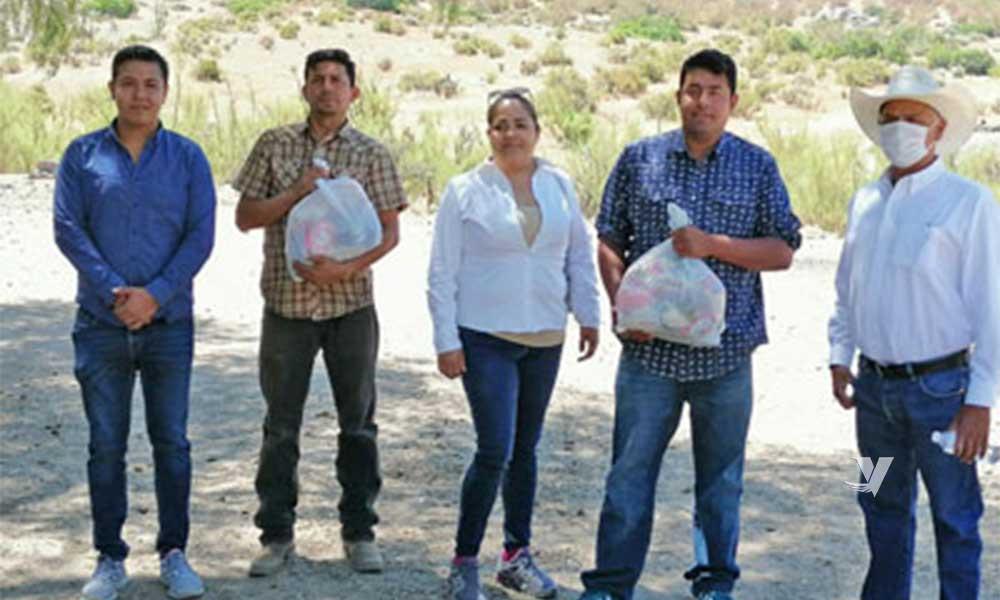 Realiza Dirección de Bienestar entrega de apoyos alimentarios a comunidad Kumiai