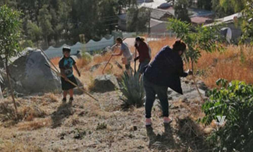 Lleva a cabo DIF Municipal brigada de limpieza