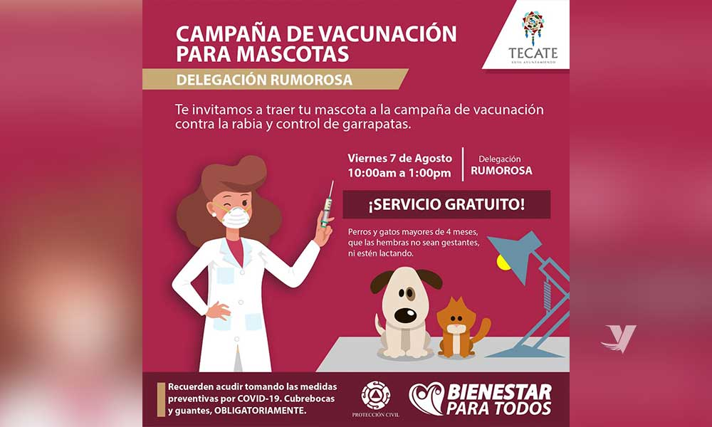 Se llevará a cabo campaña de vacunación para mascotas en delegación La Rumorosa
