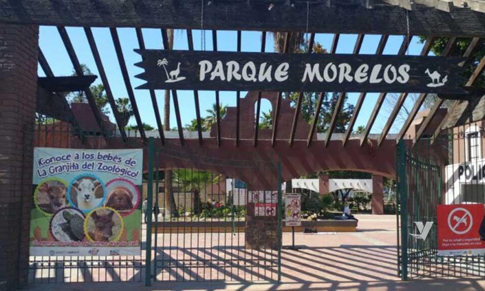 Realizan limpia de habitats en zoológico del Parque Morelos