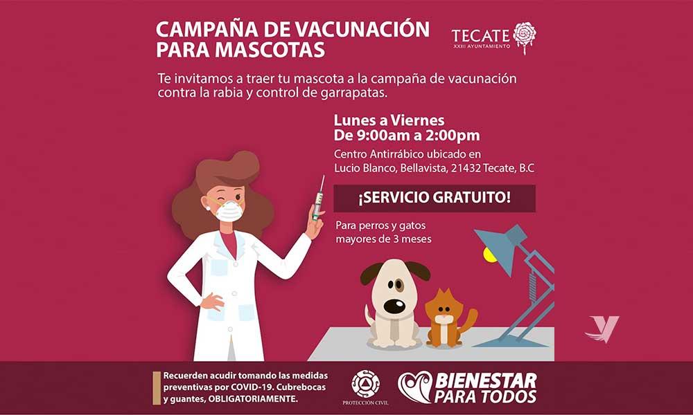 Invita Centro Antirrábico Municipal a campaña de vacunación