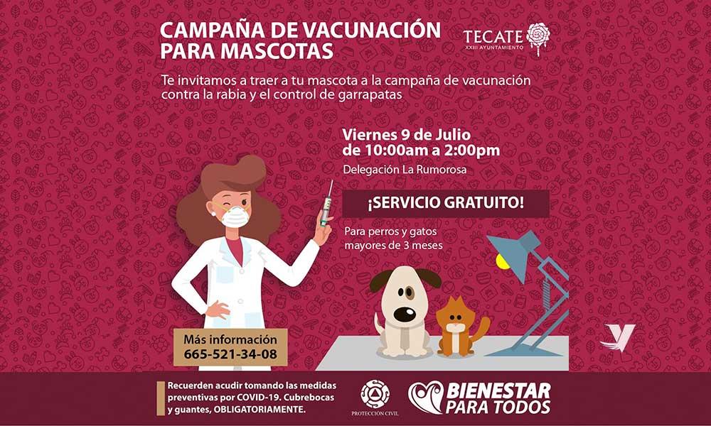 Invitan a Jornada de Vacunación para mascotas próximo viernes 9 de julio en Delegación La Rumorosa y sábado 10 de julio en Delegación Luis Echeverría Álvarez