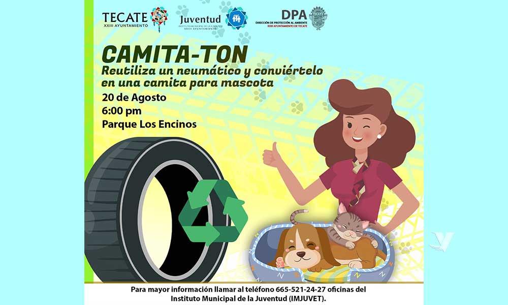 """Invita el XXIII Ayuntamiento al """"Camita-Ton"""",  para creación de camitas para mascotas con neumáticos"""